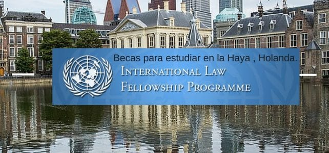 Holanda, UN, International Law