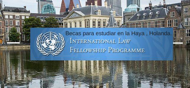 Becas completas para el Programas de derecho internacional de Naciones Unidas en la Haya (Holanda)