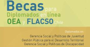 Diplomados en línea sobre Gerencia Social y Políticas de Juventud de la OEA y FLACSO
