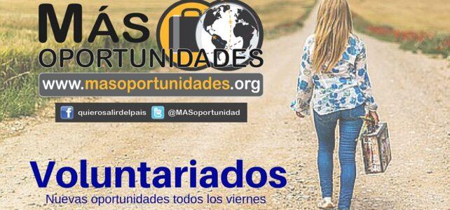 Voluntariados para mujeres y hombres de todo el mundo – Encuentra tu oportunidad