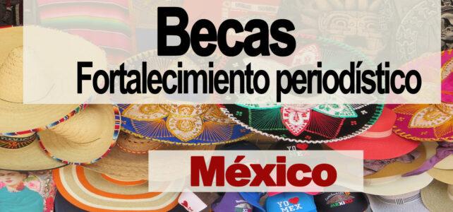 Becas para fortalecer habilidades periodísticas en México