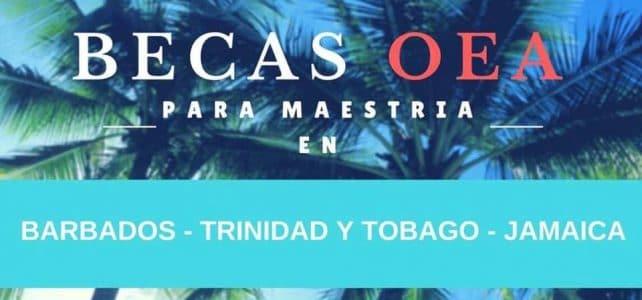 Becas de la OEA para maestría en Barbados