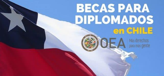Becas para diplomados en línea OEA y FLACSO