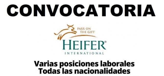 Convocatoria internacional HEIFER: organizacion que trabaja con las comunidades para poner fin al hambre y la pobreza