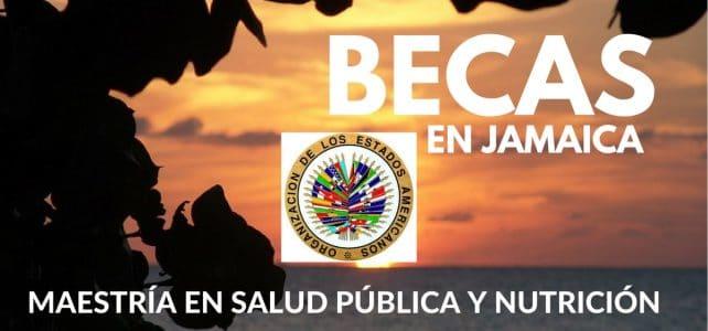 Becas de la OEA para cursar maestría en Salud Pública y Nutrición