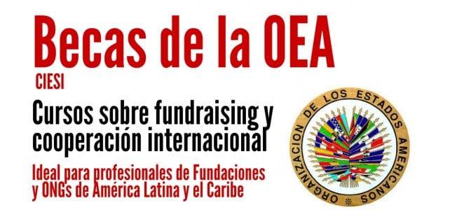 Becas OEA para cursos sobre fundraising y cooperación internacional