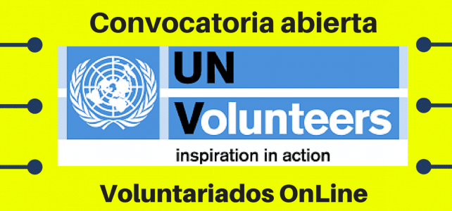 Voluntariado UN