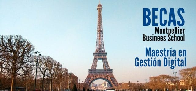 Becas en Francia para Maestría en Gestión Digital