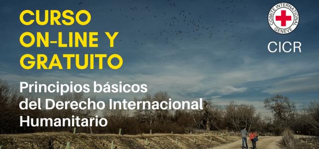 Curso online normas y principios básicos DIH – CICR