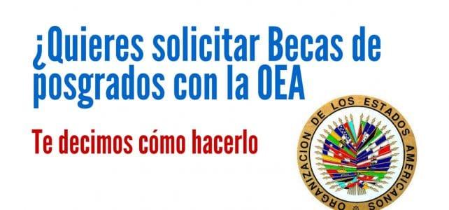 Aprende cómo solicitar becas de posgrado con la OEA