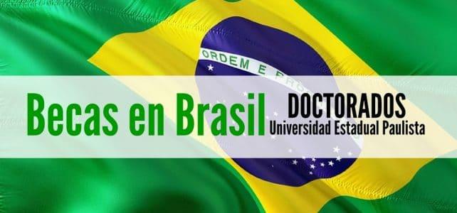 Becas para cursar estudios de Doctorado en Brasil
