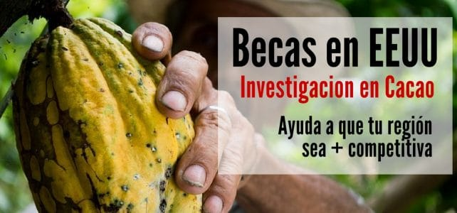 Becas en Estados Unidos para investigación en cacao