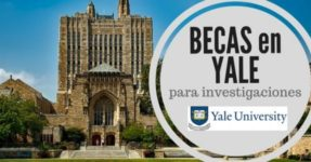 Becas de la Universidad de Yale en Estados Unidos