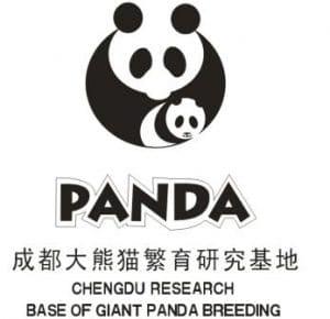 fundacion de pandas