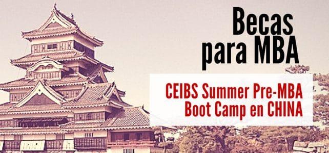 Becas para campo de verano preparación para MBA en China