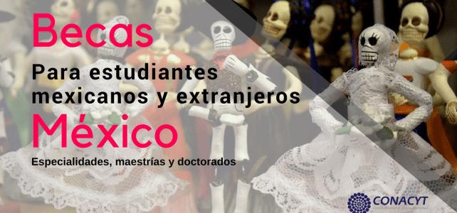 Becas de posgrado en México para mexicanos y extranjeros.