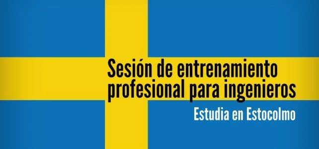 Sesión de entrenamiento profesional en Suecia para ingeniero(a)s