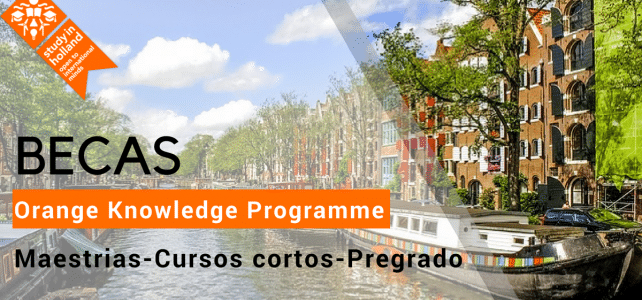 becas antes nuffic